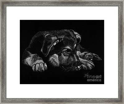 All Tuckered Out Framed Print by Yenni Harrison