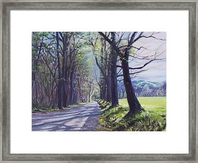 Alleghany Spring Framed Print by Bonnie Mason
