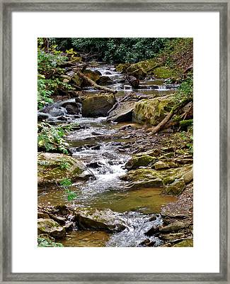 Allegheny Bound Framed Print by Anthony Thomas