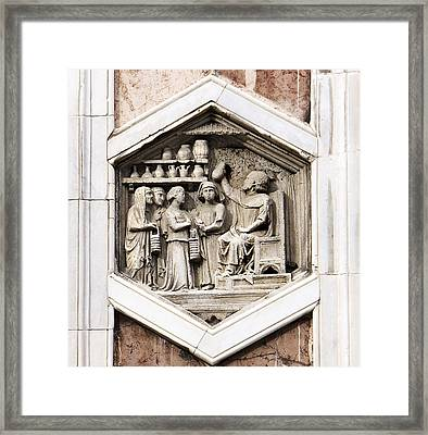 Allegorical Depiction Of Medicin Framed Print by Sheila Terry