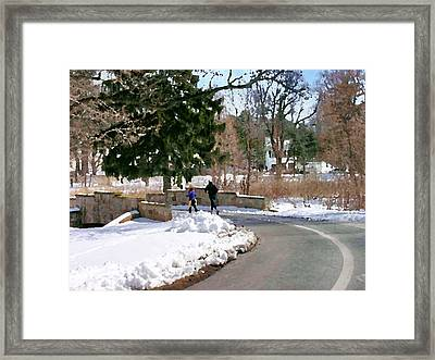 Allentown Pa Trexler Park Winter Exercise Framed Print
