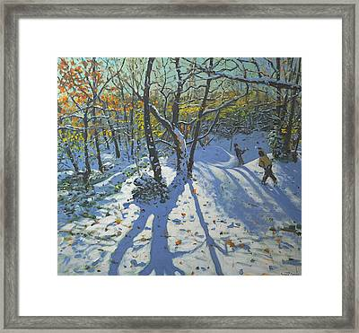 Allestree Park Woods November Framed Print by Andrew Macara
