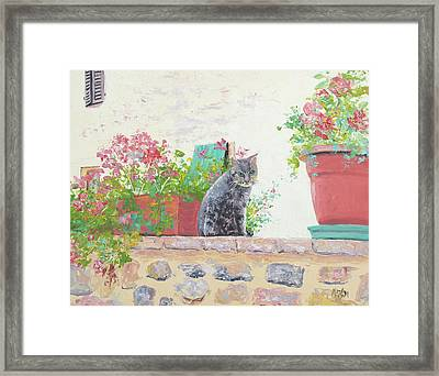 Alley Cat Framed Print by Jan Matson