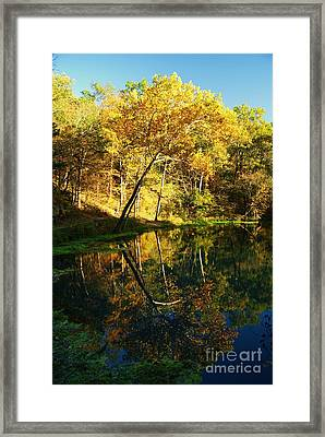 Alley Spring In Autumn Framed Print by Julie Clements