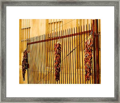 Alleys Of Taos Framed Print