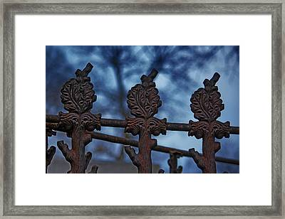 Alliance Framed Print