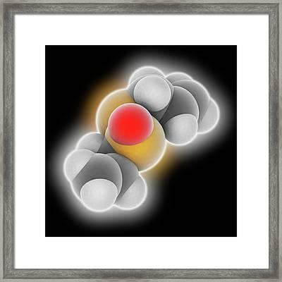 Allicin Molecule Framed Print