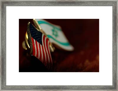 Allies Framed Print by John Rossman