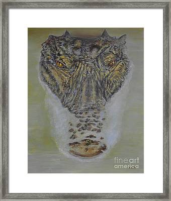 Alligator Alert Framed Print
