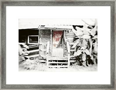 Alligator Bayou Bar Framed Print by Scott Pellegrin