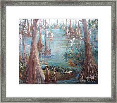 Alligator Bayou Framed Print