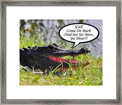 Alligator Yall Come Back Card Framed Print by Al Powell Photography USA