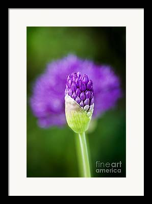 Horticulture Framed Prints