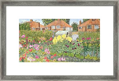 Allotments And Dahlias Framed Print by Linda Benton