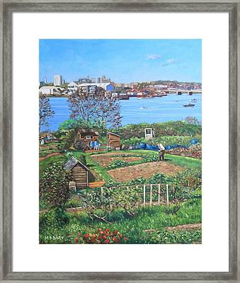 Allotments At Southampton Beside River Itchen Framed Print