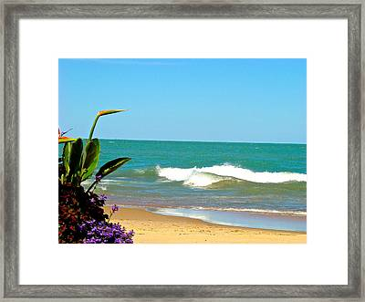 Allow Yourself To Imagine At A Beach Framed Print