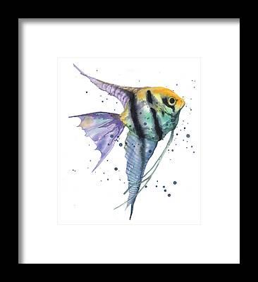 Angel Fishes Framed Prints