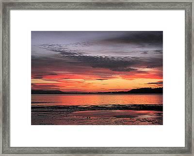 Alluring Sunset Framed Print by Suzy Piatt