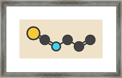 Allyl Isothiocyanate Mustard Molecule Framed Print by Molekuul