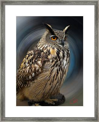 Almeria Wise Owl Living In Spain  Framed Print
