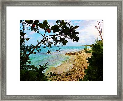 Framed Print featuring the photograph Almond View by Amar Sheow