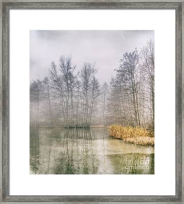 Framed Print featuring the photograph Almost Frozen Almost Winter by Maciej Markiewicz