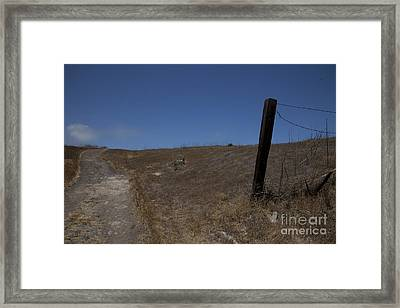 Almost Home Framed Print by Amanda Barcon