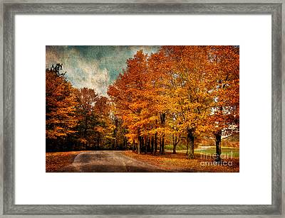 Almost Home Framed Print by Lois Bryan