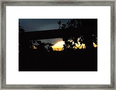 Vineyard At Twilight Framed Print by ARTography by Pamela Smale Williams