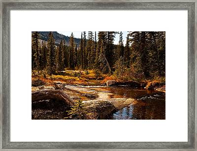 Almost Perfect Framed Print by Randolph Fritz