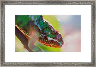 Almost Seem I Aint Paying Attention Doesnt It Framed Print