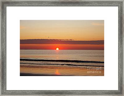 Almost Up Framed Print by Eunice Miller