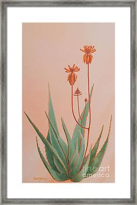 Aloe Family Framed Print