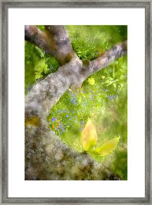 Aloft Framed Print by Richard Piper
