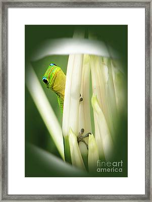 Framed Print featuring the photograph Aloha by Ellen Cotton