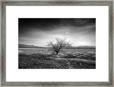 Alone - Forever Alone Framed Print by Peter Tellone
