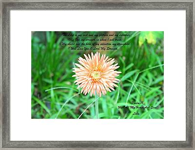 Alone And Standing Framed Print by Lorna Maza