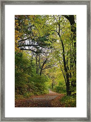 Alone Framed Print by Bruce Bley