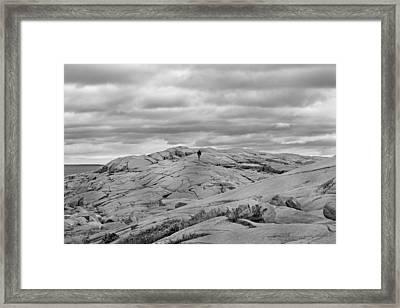 Alone Framed Print