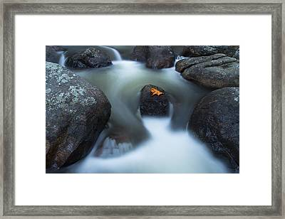 Alone In Autumn Splendor Framed Print
