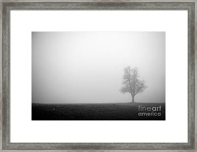 Alone In The Fog - Bw Framed Print by Hannes Cmarits