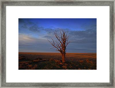 Framed Print featuring the photograph Alone Yet Not Alone by Lynn Hopwood