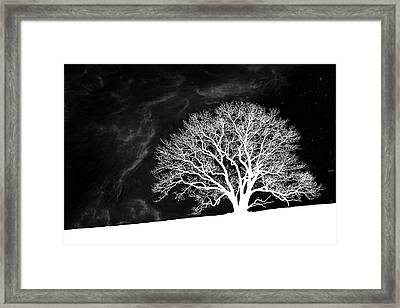 Alone On A Hill Framed Print by Tom Mc Nemar