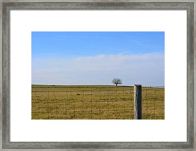 Alone Or Standing Out Framed Print