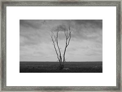 Framed Print featuring the photograph Alone  by Ricky L Jones
