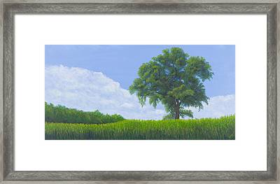 Alone Summer Framed Print by Garry McMichael