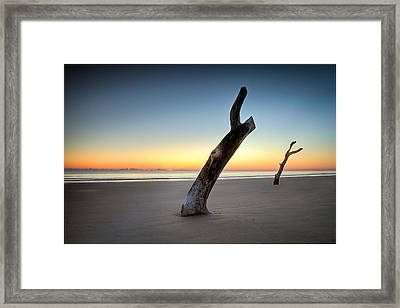 Alone Together Framed Print
