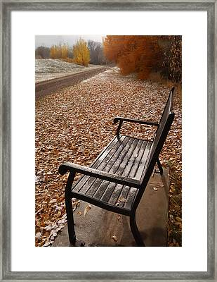 Alone With Autumn Framed Print by Steven Milner