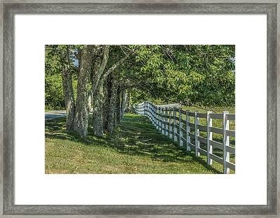 Framed Print featuring the photograph Along A Country Road by Jane Luxton