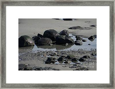 Along A Maine Beach Framed Print by Eunice Miller